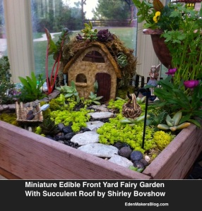 Edible-Miniature-Garden-with-Succulent-Roof
