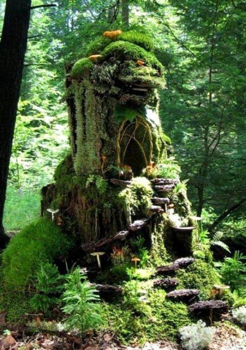 Shirley-Boley-shares-this-fantastical-tree-stump